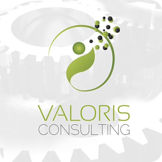conseil-maintenance-industrielle